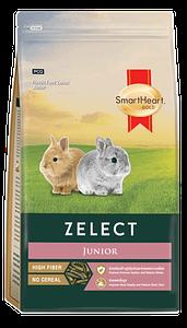 Zelect Junior