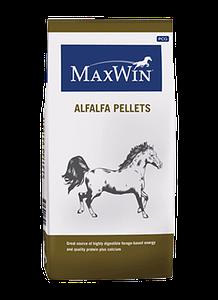 Maxwin Alfalfa