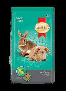 SmartHeart® Rabbit